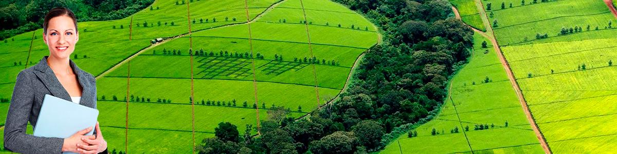 оценка земельных участков Тихорецк